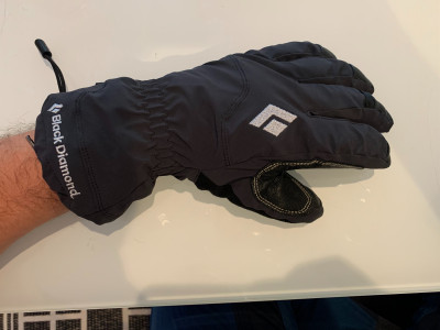 Image 1 from Timo of Black Diamond - Glissade - Gloves