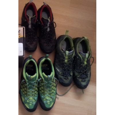 Image 2 from Joachim of Salewa - Firetail GTX - Approach shoes