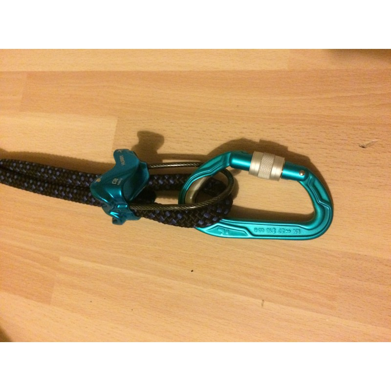 Image 1 from Trent  of Edelrid - Bulletproof Screw - Screwgate carabiner