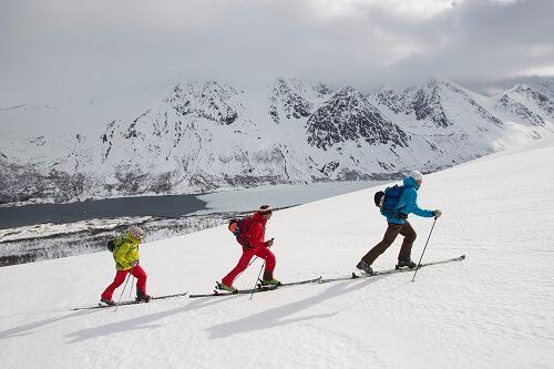 Ski Touring Poles